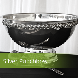 Stainless Bowl w. Ladle
