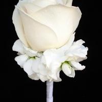 Haz Rental Groom Florals