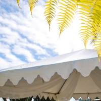 Haz Rental Center -  Garden Tent