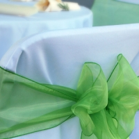 White Linen Chair Cover with Green Sashes