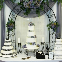 Powder Coated Steel Arch w/Cake Display