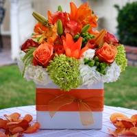 Haz Floral Decor