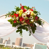 Haz Rental Center Props & Florals