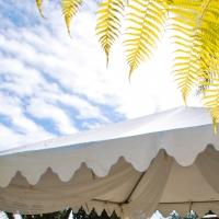 Haz Rental Center -  Garden Tent